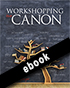 Thumbnail for Workshopping the Canon (ebook)